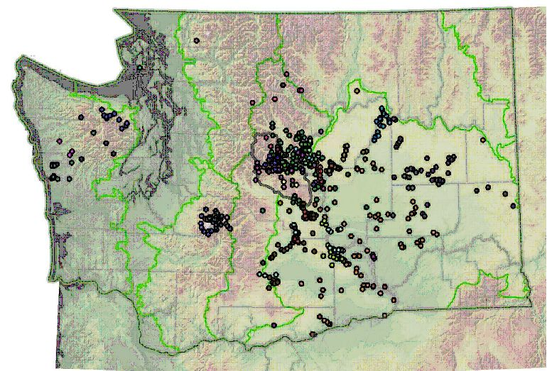 Washington endemics map