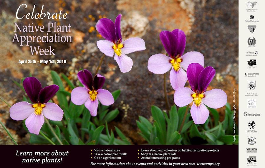 2010 poster final sagebrush violet resize